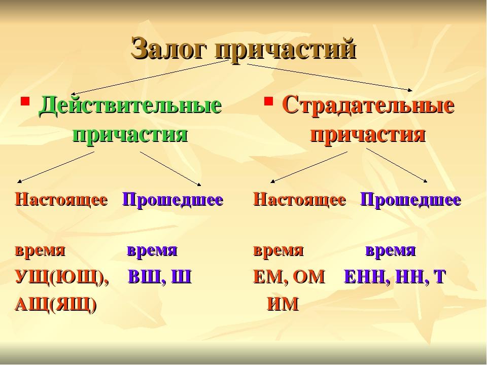 Образование причастий в русском языке