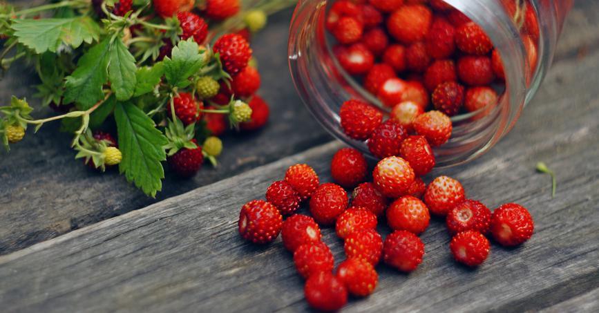 Что такое ягода