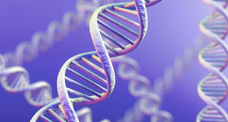 Геном — википедия с видео // wiki 2