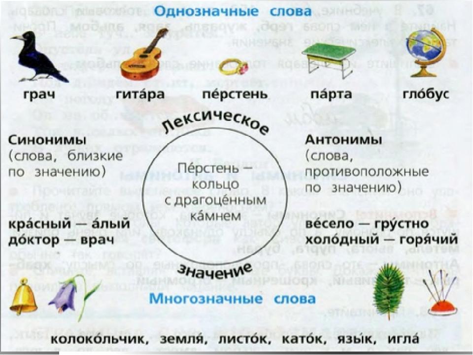 Что такое омонимы. примеры омонимов в русском языке