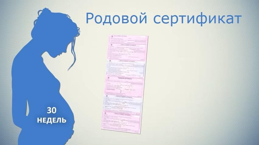 Что такое родовой сертификат и для чего он нужен