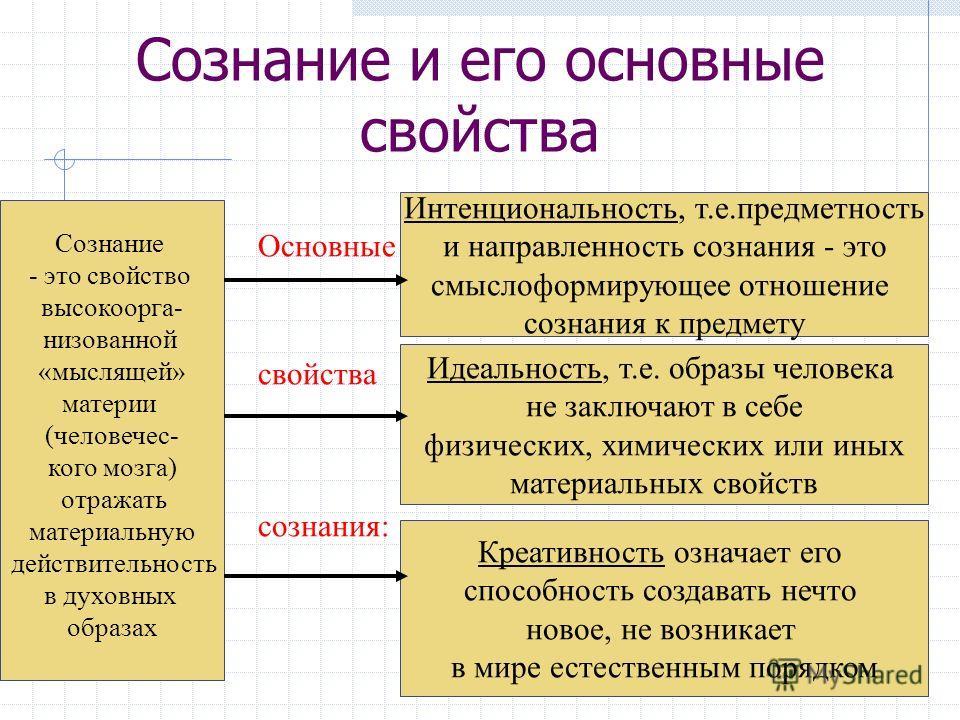 Что такое сознание – определение, структура, функции, уровни, развитие, управление