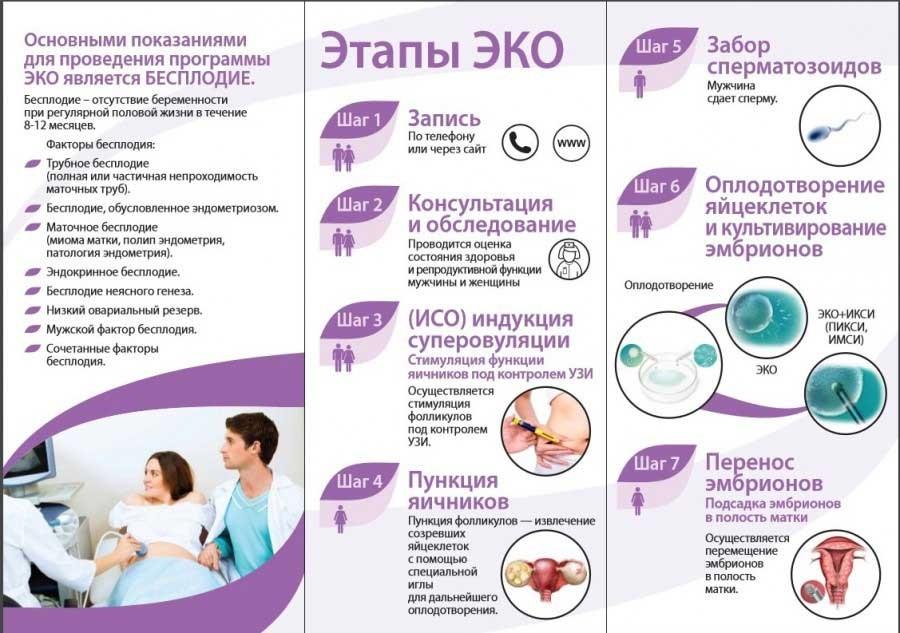 Что такое икси: особенности оплодотворения, цена на искусственную инсеминацию, проведение процедуры со спермой мужа в домашних условиях