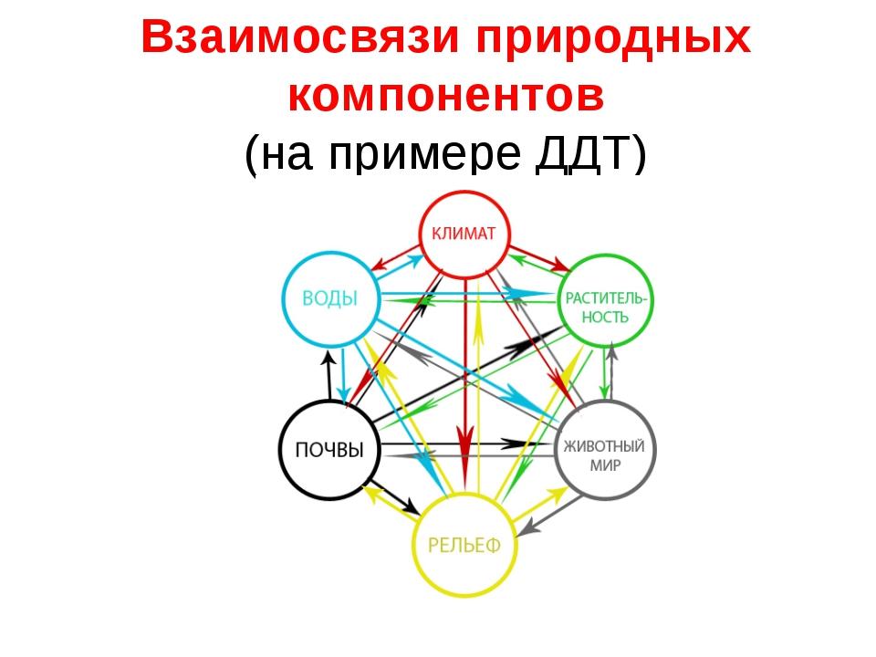Какие крупные природные комплексы выделяют на территории россии?