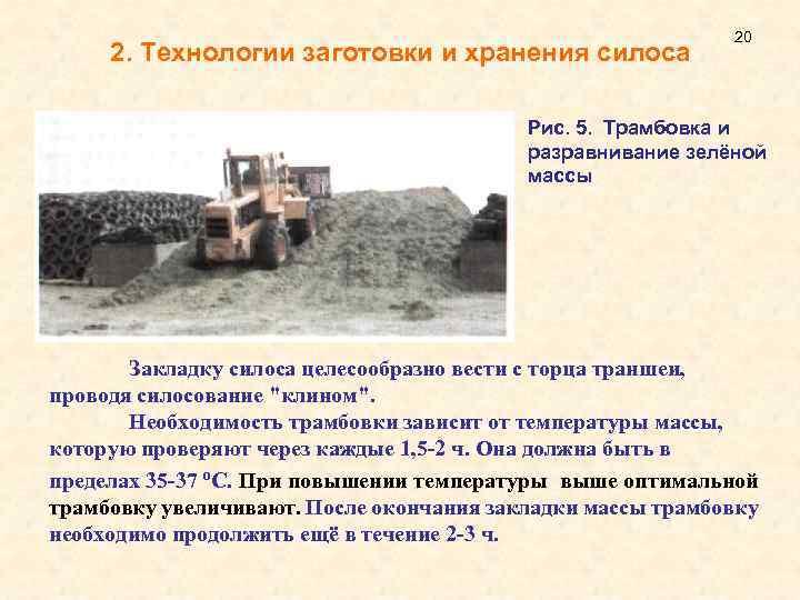 Что такое силос? заготовка силоса. корм для крупного рогатого скота :: syl.ru