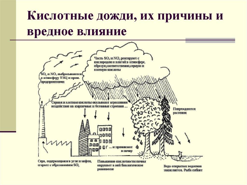 Кислотные дожди: что это такое, чем вызваны, компоненты, фото