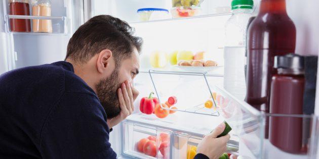 Холодильник — википедия. что такое холодильник