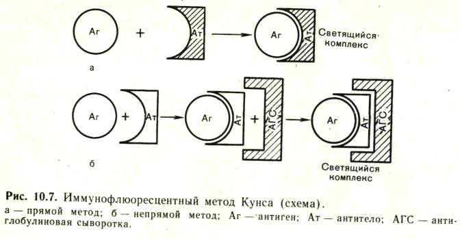 Нейтрализация (химия) - neutralization (chemistry) - qwe.wiki