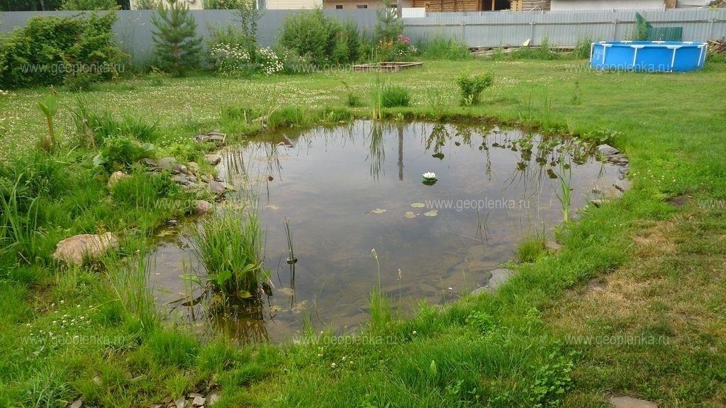 Какие отличия между озером и прудом?