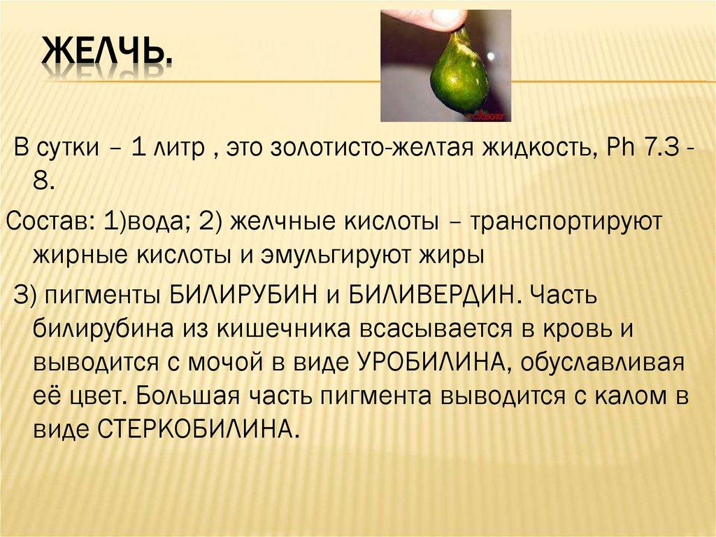 Желчный человек — это… определение понятия, качества личности : labuda.blog желчный человек — это… определение понятия, качества личности — «лабуда» информационно-развлекательный интернет журнал