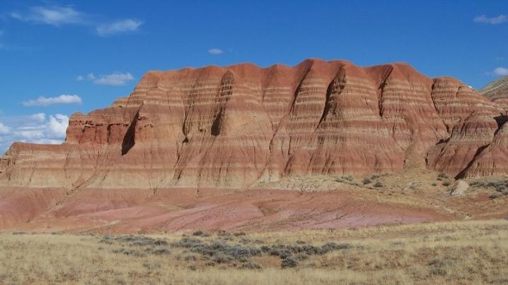 Профиль почвы: сущность, варианты классификации и составов
