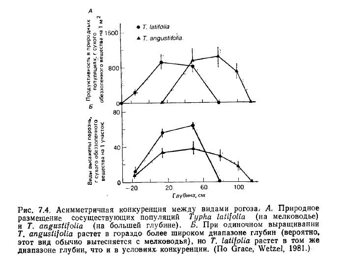 Конкуренция (биология) - competition (biology) - qwe.wiki