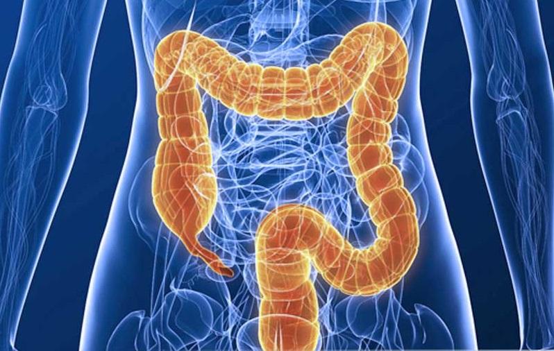 Колит кишечника, симптомы и лечение у взрослых