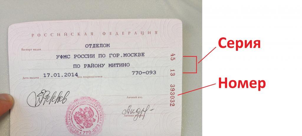От чего зависит серия и номер паспорта. описание документа гражданина рф. что означает серия