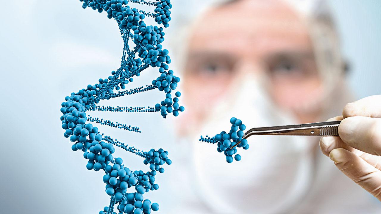 Ген — википедия. что такое ген