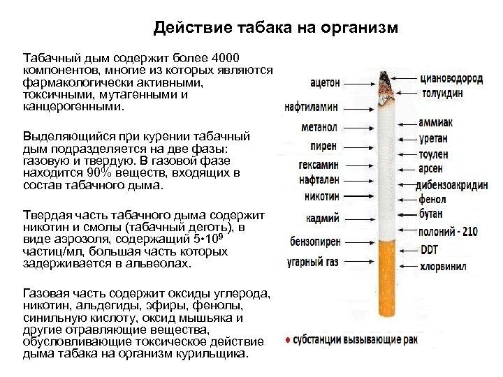5 опасных марок сигарет, которые лучше не покупать и не курить, даже если угостили