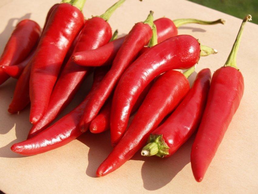 Перец - это овощ, фрукт или ягода: что такое, сколько существует, относится ли к группе однолетнего стручкового растения, семейство и виды, в том числе болгарский