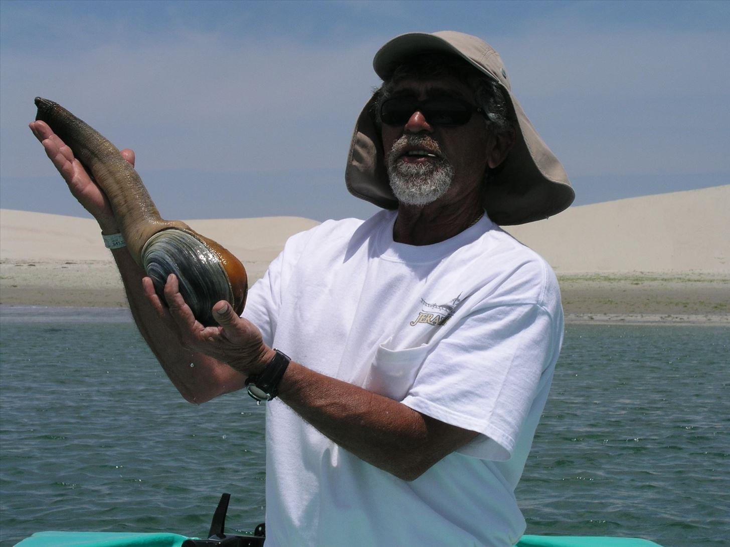 Гуидак: бесстыжий моллюск-эксгибиционист — 4 лапки