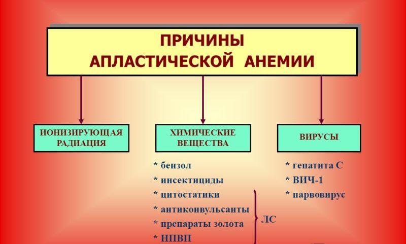 Апластическая анемия: что это такое, лечение, симптомы, причины, диагностика, признаки