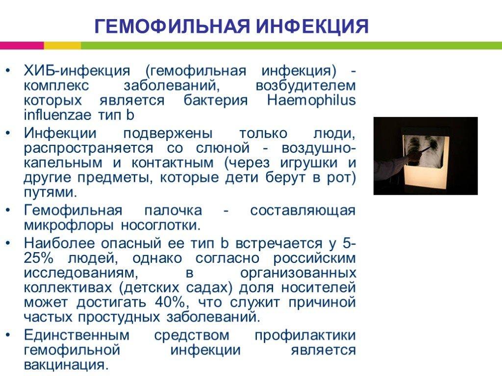 Гемофильная инфекция. гемофильная палочка. симптомы заболевания. много фото