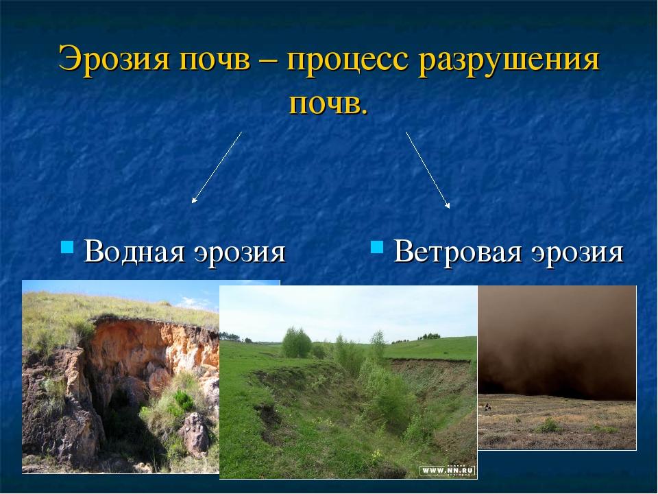 Эрозия почвы википедия