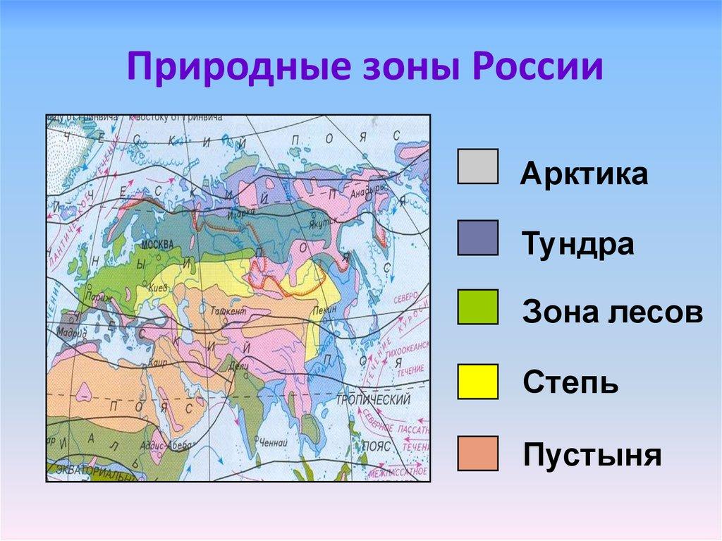 Основные природные зоны мира, распространение по земле