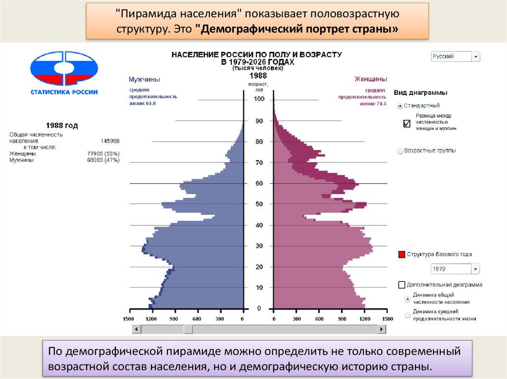 Половозрастная пирамида: виды, типы, группы. анализ половозрастной пирамиды россии