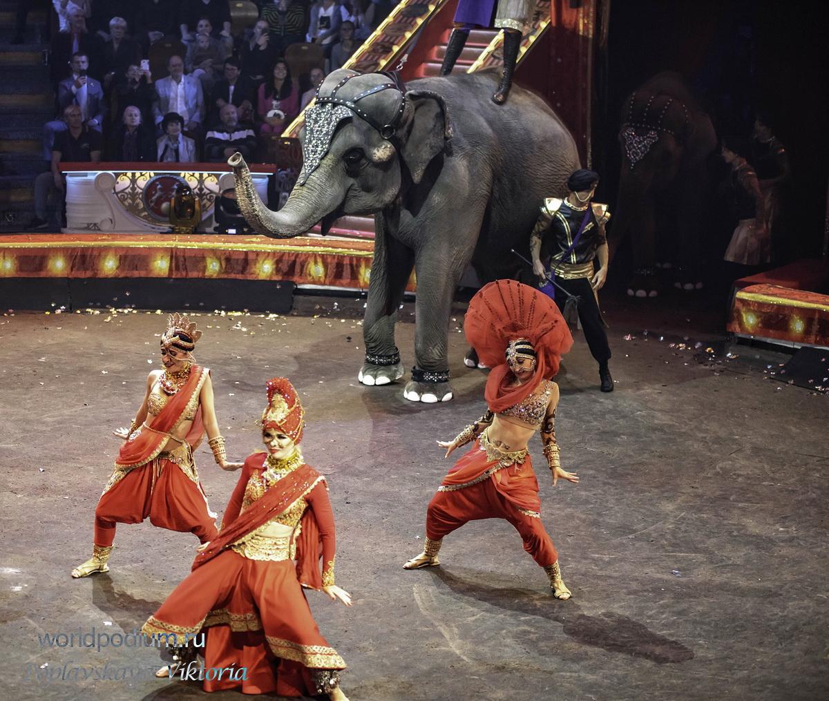 Цирк (фильм, 1928)