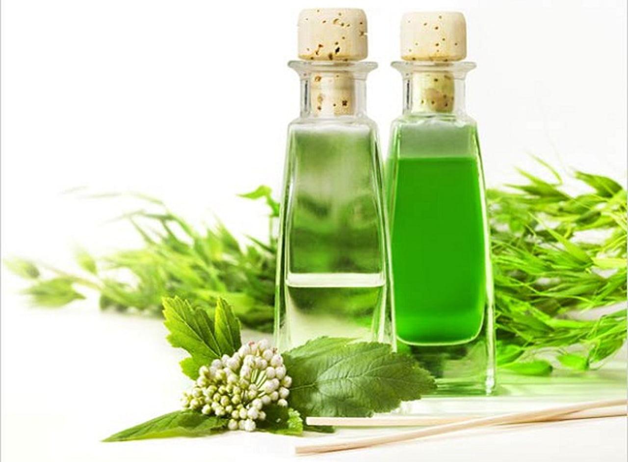 Что такое экстракт? польза растительных экстрактов