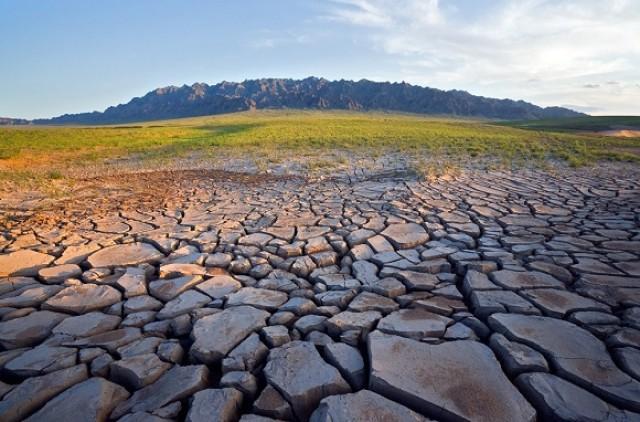 Что такое опустынивание? причины опустынивания. где происходит опустынивание? последствия опустынивания
