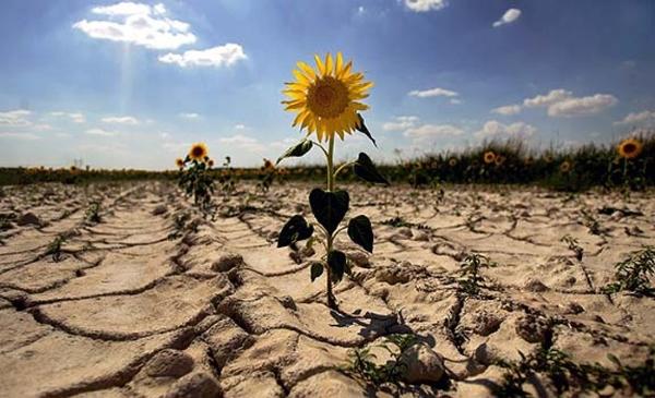 Где происходит опустынивание?