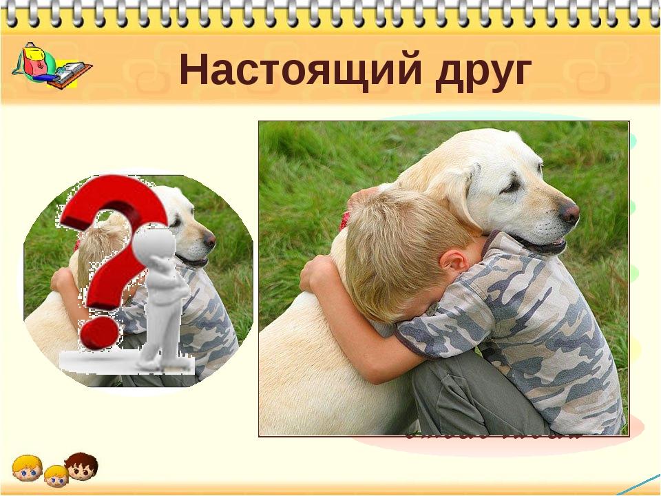 Бывает ли настоящая дружба: три категории дружбы — колесо жизни