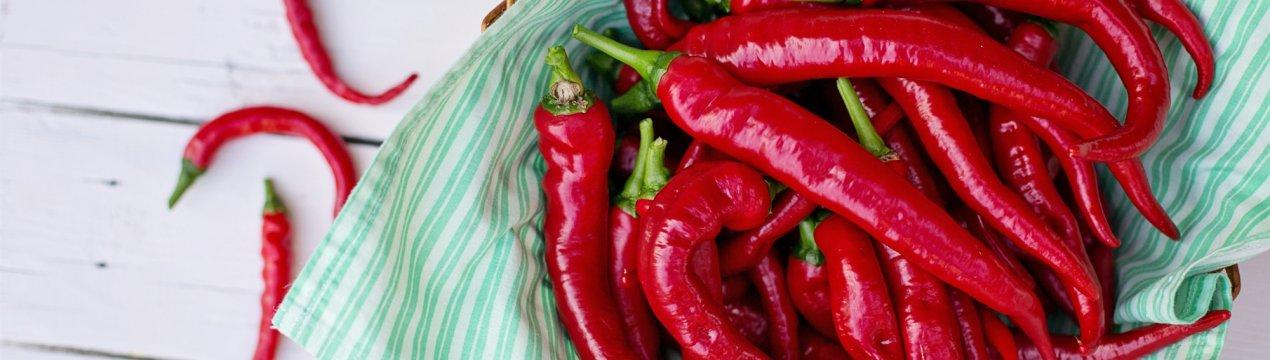 Сладкий болгарский перец: выращивание и уход, агротехника, фото