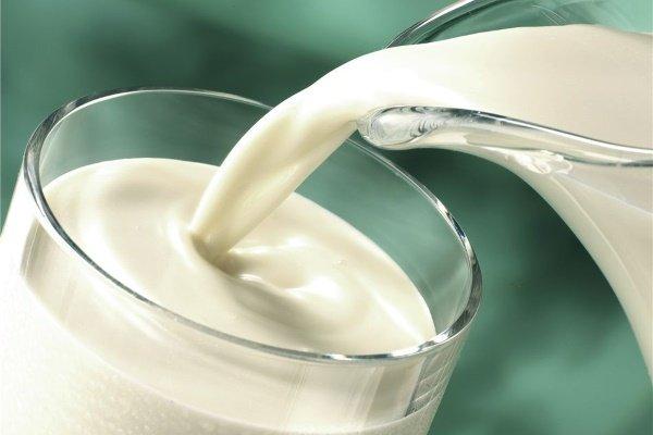Молоко: польза и вред для организма, состав, калорийность, противопоказания