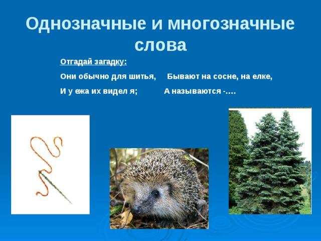Чем отличаются многозначные слова от омонимов? определение, примеры