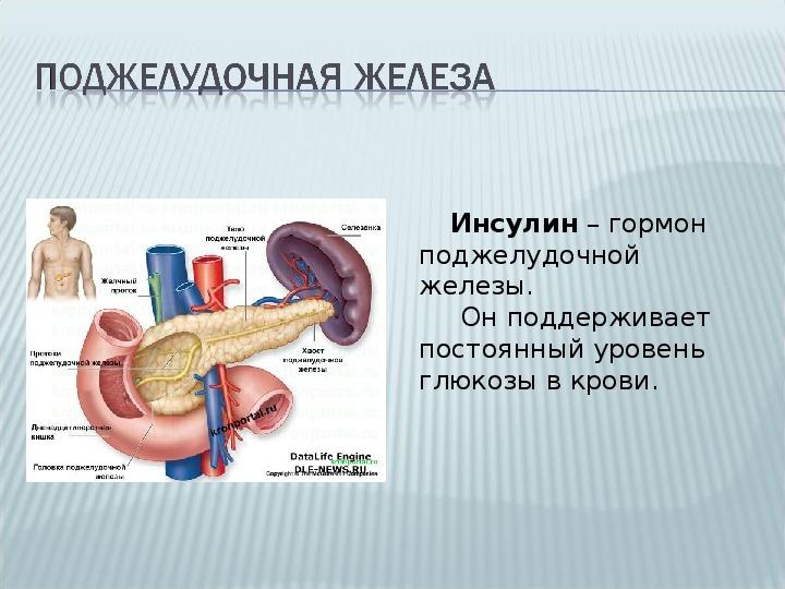 Инсулин — инструкция по применению, описание, вопросы по препарату