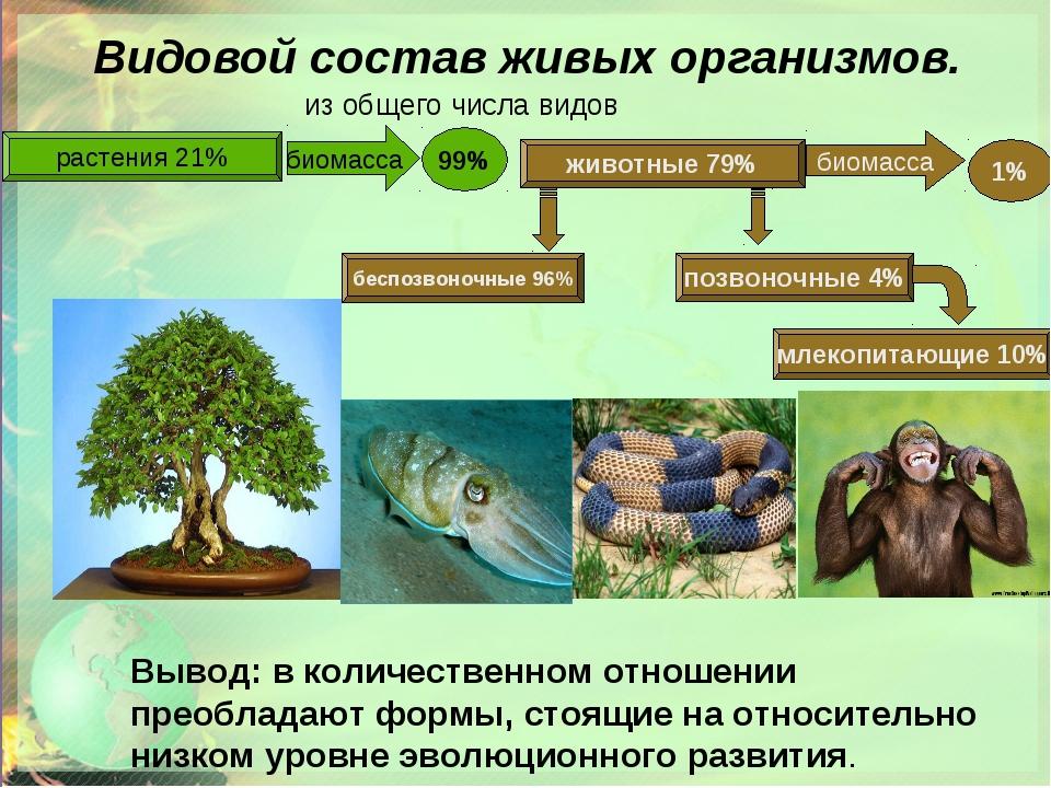 Биоценоз - примеры. естественные и искусственные биоценозы
