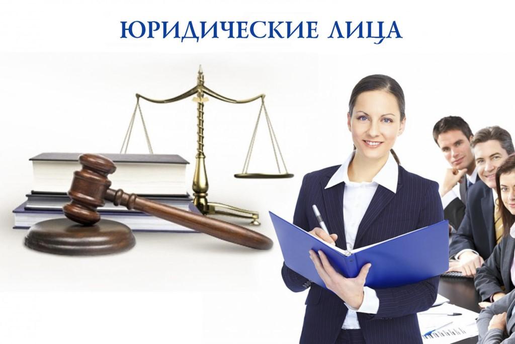 Отличия физических и юридических лиц — права, признаки и ответственность
