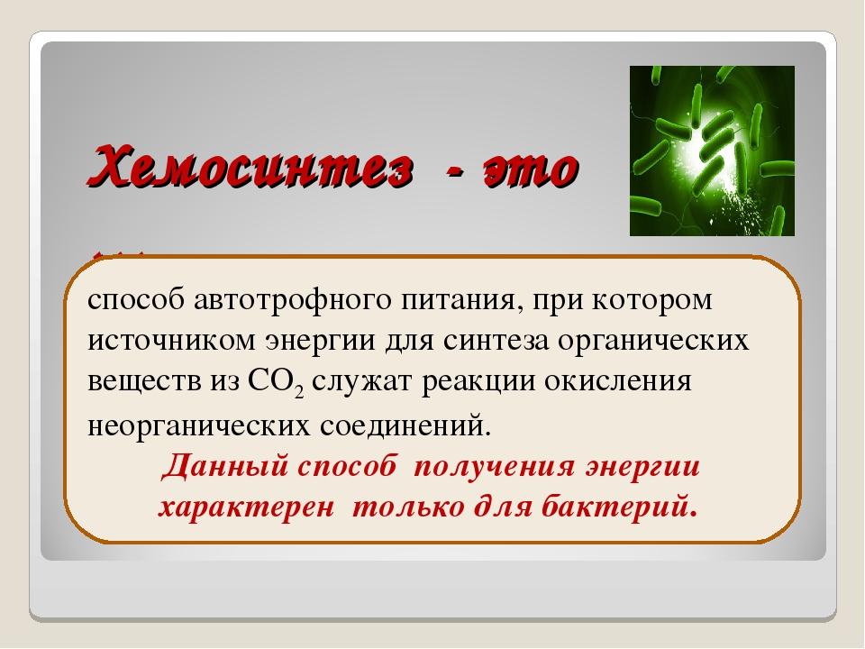 Фотосинтез, его значение, космическая роль. фазы фотосинтеза. световые и темновые реакции фотосинтеза, их взаимосвязь. хемосинтез. роль хемосинтезирующих бактерий на земле / справочник :: бингоскул