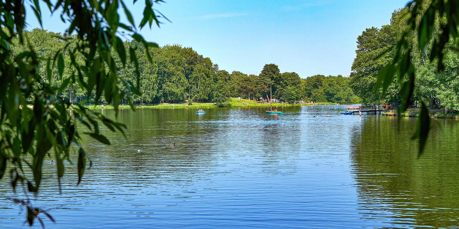 Зарыбление прудов озер водоемов  | очистка прудов, рек, водоемов