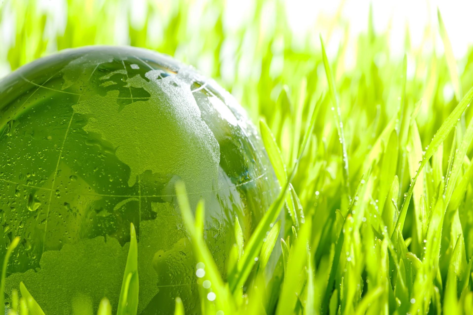 Экология — часть человека или наоборот?