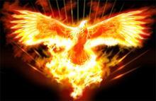 Что означает огненная птица феникс — eta-dzeta.ru