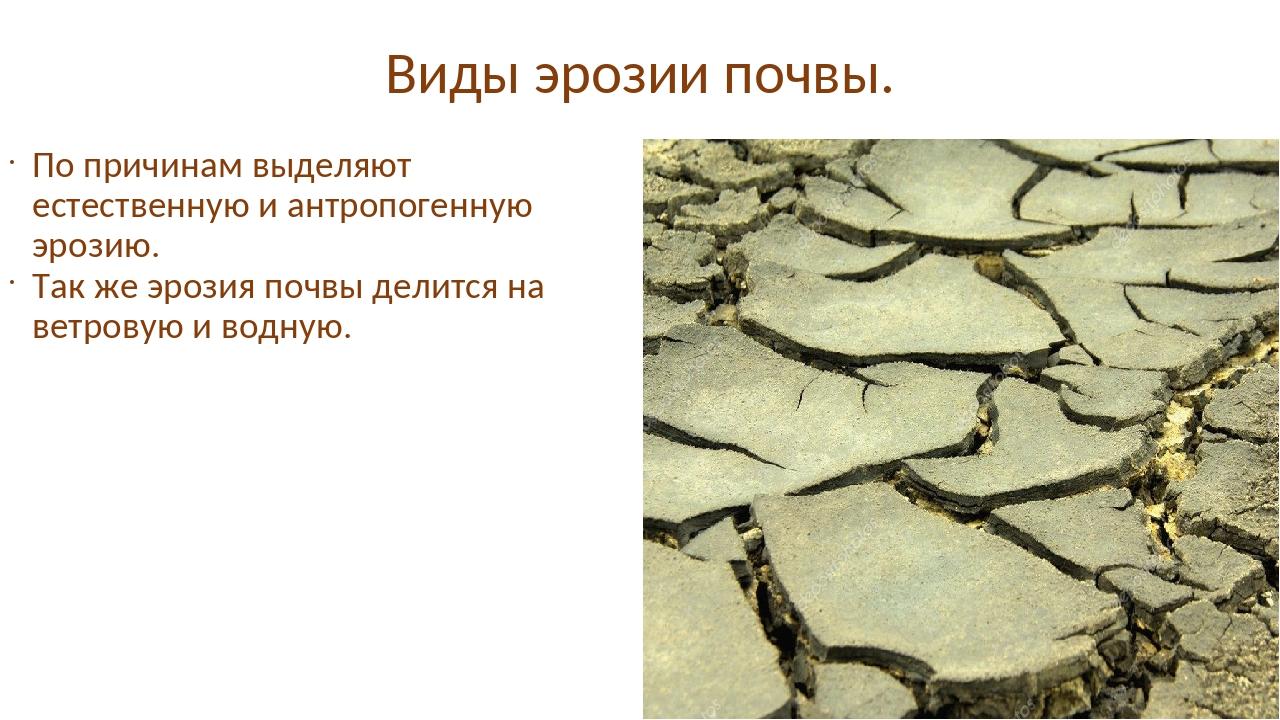 Эрозия (геология)