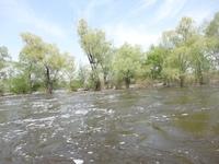 Что такое падение реки и ее режим? уклон и падение крупнейших рек планеты
