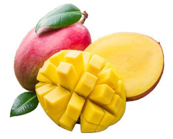 Папайя – фрукт жарких стран