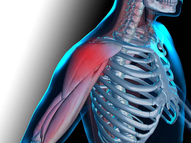 Молочная кислота в мышцах после тренировки способы ее разгона | women planet