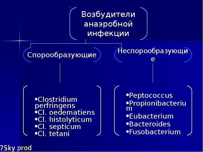 Симптомы и лечение анаэробных инфекций