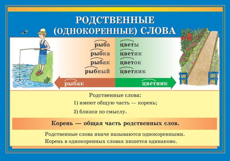 Корень слова — что такое и как его найти. что такое корень слова в русском языке