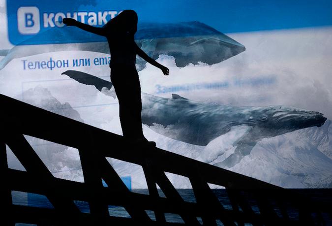 Большой синий кит – гигант планеты земля. описание и фото синего кита
