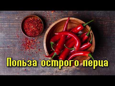 Загадка перца паприка: применение, отличие от болгарского перца, фото